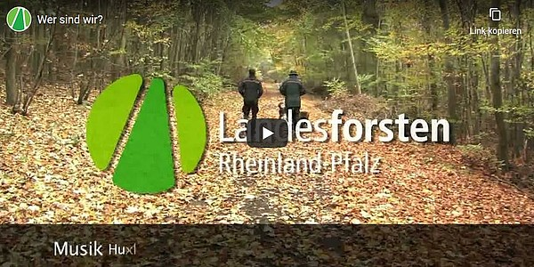 Image-Video Landesforsten.RLP